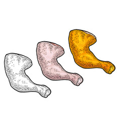 Raw and roasted chicken leg vintage color vector