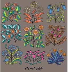 Set of plants with flowers and leaves vector