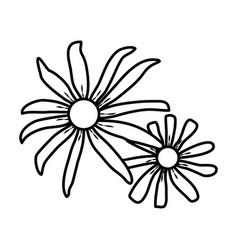 susan flower floral hand drawn design sign vector image