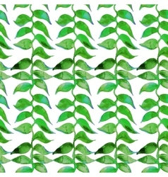 Heliconia watercolor pattern Tropical vector image
