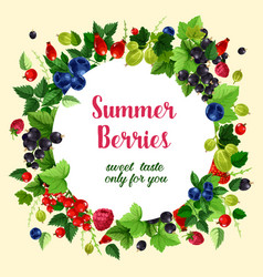 summer berries and fruits poster vector image vector image