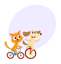 cute little dog and cat kitten characters riding vector image