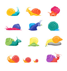 cartoon color characters funny snails set vector image