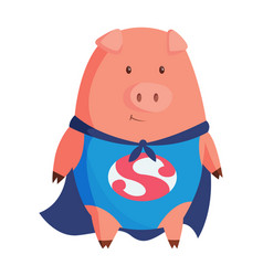 Cartoon pig in superman clothing vector