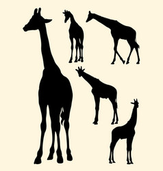 Cute giraffe gesture animal silhouette vector