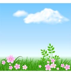 Meadow flowers vector