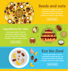nuts seeds food banner horizontal set flat style vector image