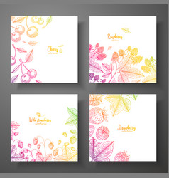set of colorful botanical cards with berries vector image