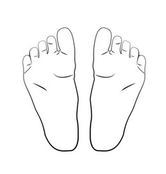 the girl s foot in black lines vector image