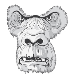 Vintage t-shirt design with gorilla face vector