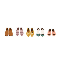 Women s shoe wardrobe set female fashion vector