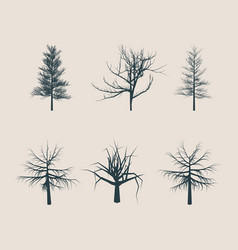 dead tree without leaves silhouettes vector image