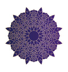 Decorative floral purple mandala ethnicity vector