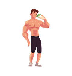 Man bodybuilder weightlifter drinking protein vector