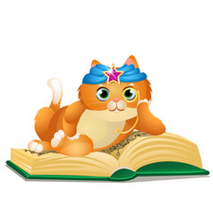 smart cat reads book isolated on white background vector image