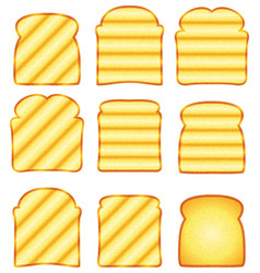 Toasted bread slices vector