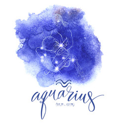 astrology sign aguarius vector image vector image