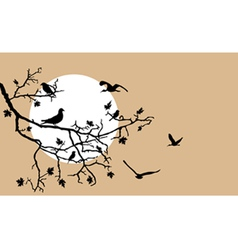 birds on a tree branch vector image