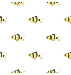 Barbus fish icon cartoon Singe aquarium fish icon vector