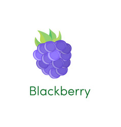 cartoon blackberry icon fruit isolated on white vector image