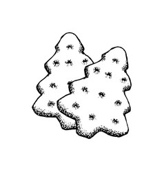 gingerbread sketch icon christmas tree ginger vector image