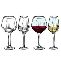 Hand drawn glasses with red and white wine vector