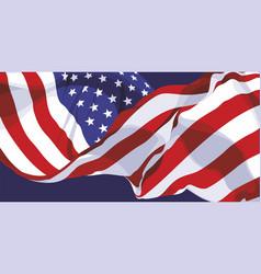 national flag usa vector image
