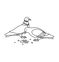 pigeonold age single icon in outline style vector image