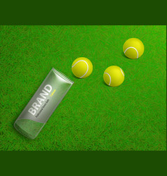 tennis balls on court lawn realistic vector image