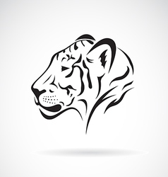 Tiger head on white background vector image
