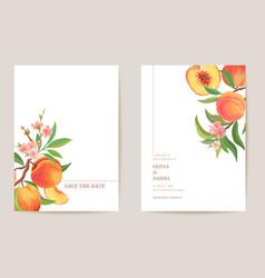 wedding invitation peach fruits flowers leaves vector image