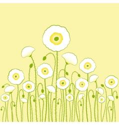 white poppy vector image
