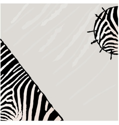 Abstract zebra background vector image