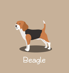 An depicting beagle dog cartoon vector