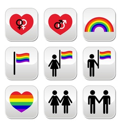 Gay and lesbian couples rainbow buttons se vector image