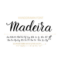 Handdrawn script font brush style texture vector