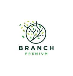 tree branch circle leaf tree logo icon vector image