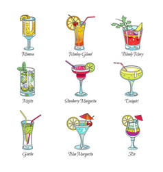 Cocktails collection alcoholic drinks vector