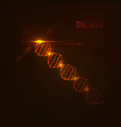 dna shape of glowing circles and particles vector image