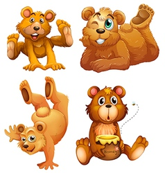Four playful brown bears vector