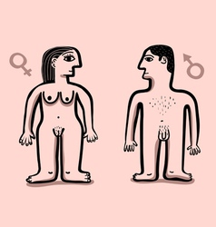human nude couple vector image