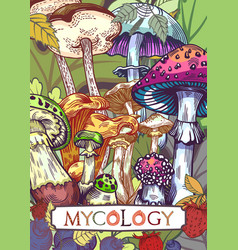 Mycology cover vector