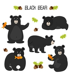 set of isolated black bear vector image