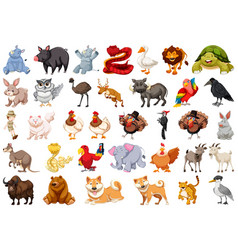 Set wild animal vector