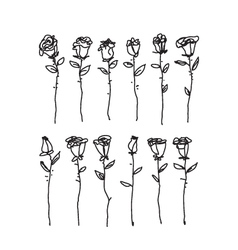 Black and white drawing of single roses vector image