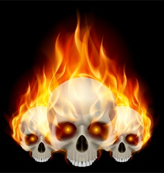 Three flaming skulls vector image vector image