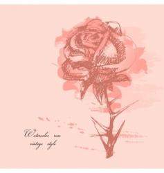 watercolor rose vector image vector image