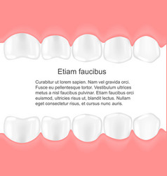 Human teeth in mouth infographics dental care vector