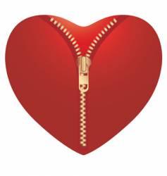open heart vector image
