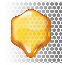 realistic honey drop hexagon on vector image